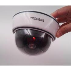 Realistic Appearance CCTV Security Dome Camera with Activation Flashing LED light