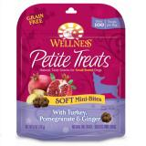 Wellness petite treats crunchy mini bites dog snacks turkeypomegranate amp ginger 7341 85787703 4711f6c635d4493f243e4f068da81b19 catalog