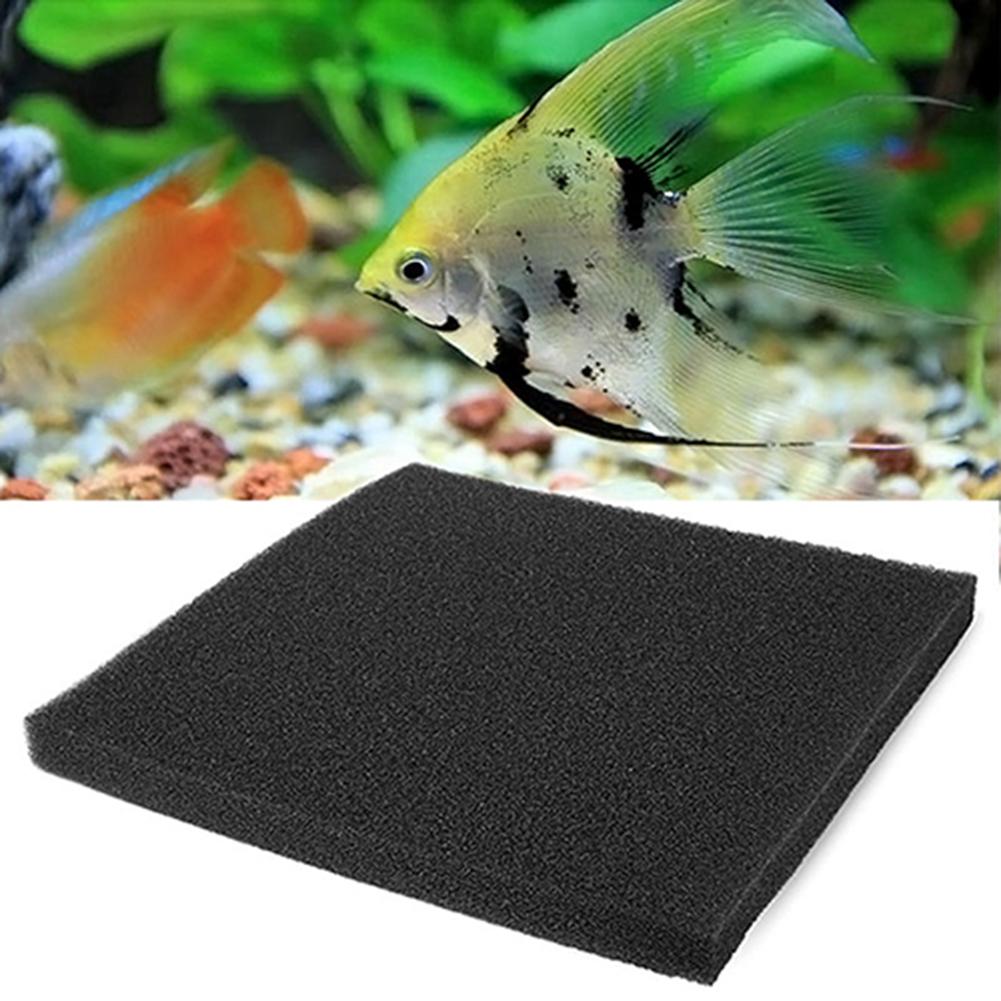 1 Miếng Bọt Biển Lọc Sinh Hóa Tấm Xốp Lọc Ao Cá, Cho Bể Cá thumbnail
